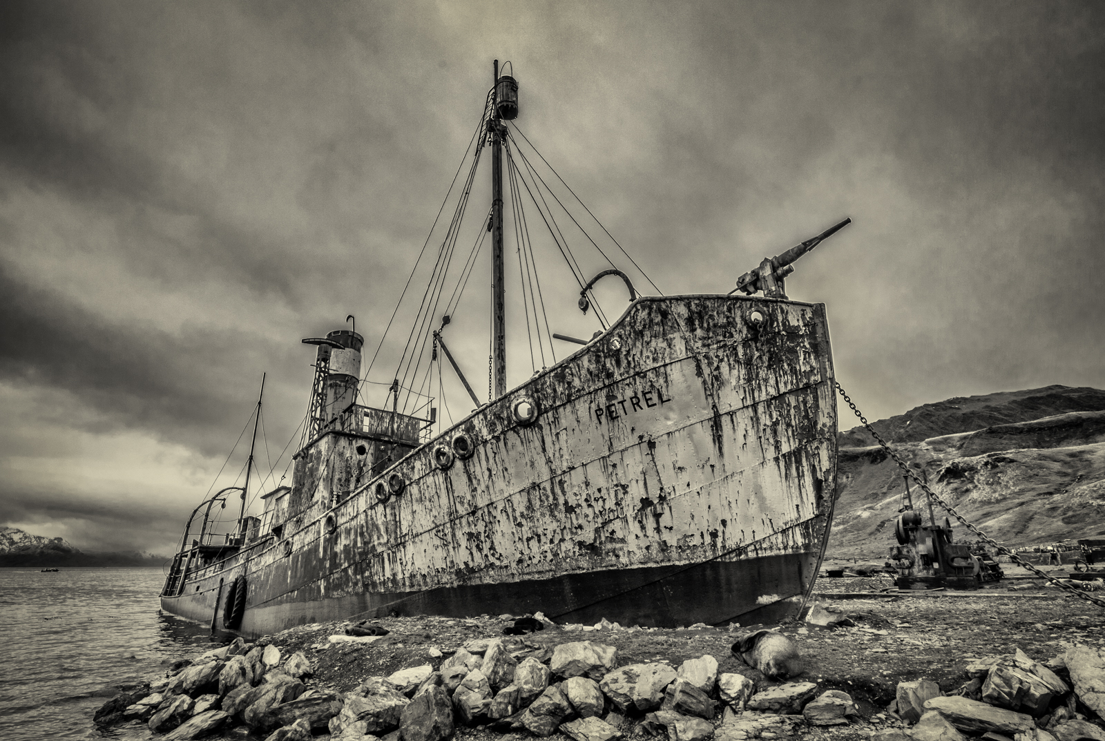 Grytviken Whaler Wreck